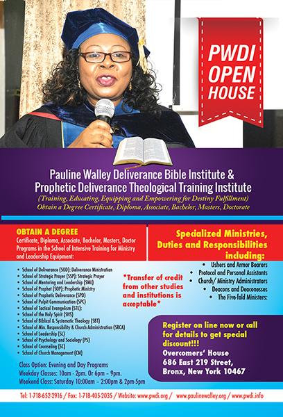 Flyer - PWDI Info 2016